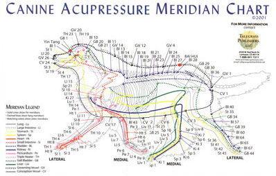 acupressure-chart-dog-jpg