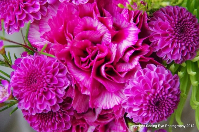 Purplessence